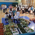 חלוקת מזון לפסח 2019